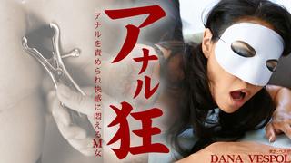 アナルを責められ快感に悶えるM女 アナル狂 Dana Vespoli / ダナ Kin8tengoku 1797