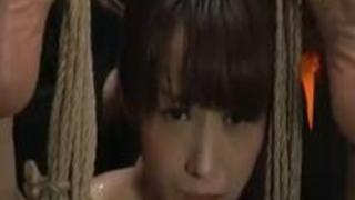 緊縛吊るされて強制フェラ肉便器調教に絶叫する軟体M女!【SMエロ動画】